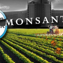 BREAKING NEWS: The Name Monsanto is Officially History After 117 Years of Poisoning People Around the Globe