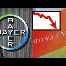 Shares of Bayer AG Plummet to Lowest Level in Nearly Seven Years After Monsanto Loses Landmark Cancer Trial