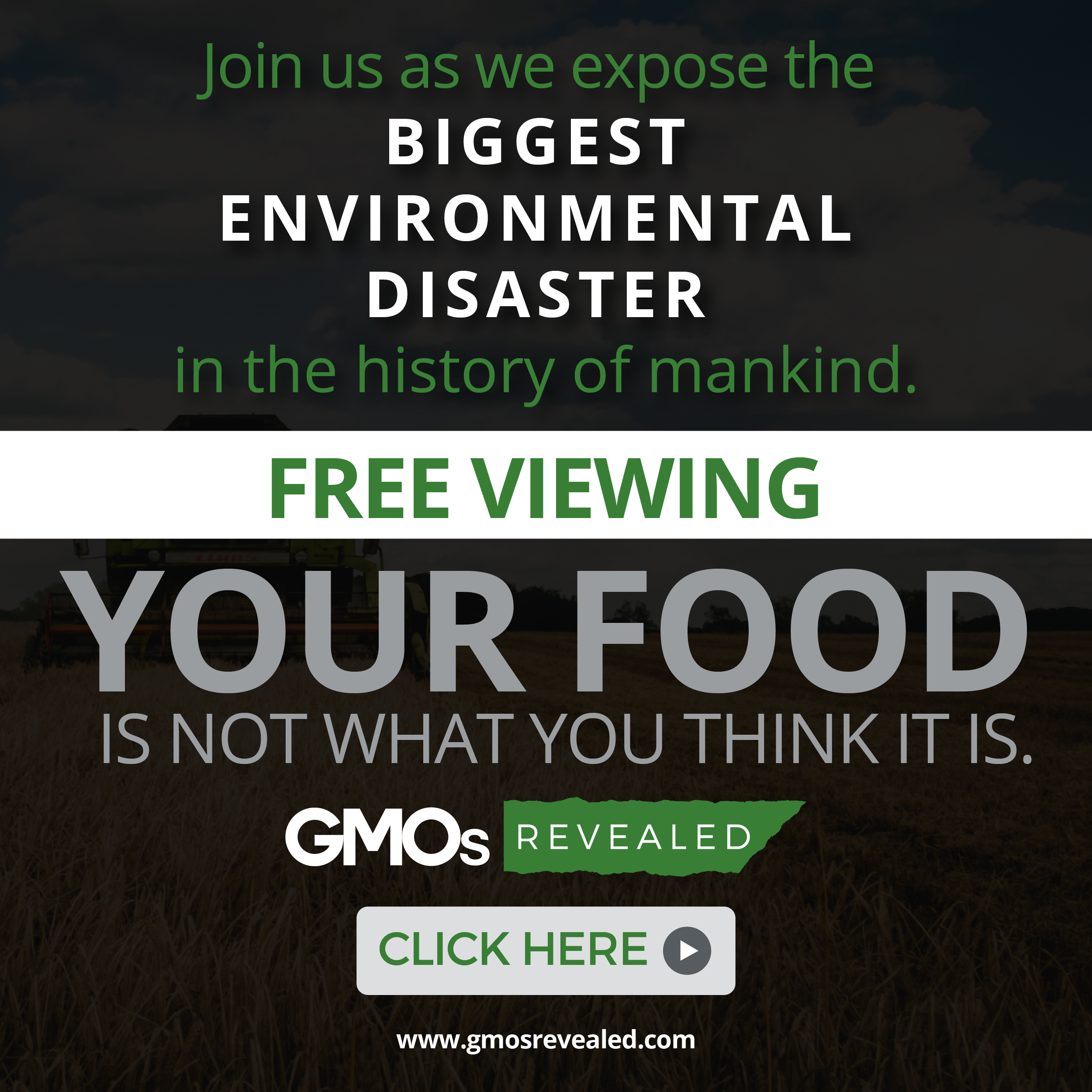 gmos revealed video player