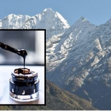 Shilajit – The Most Underestimated Wholesome Mineral Superfood