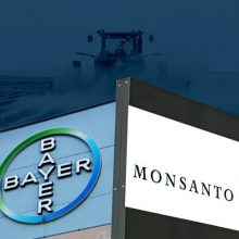 Breaking News: Bayer Stock Has Now Lost Almost 50% of Its Value Since Merger With Monsanto