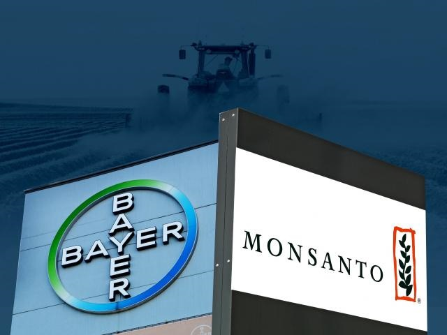 Bayer Monsanto stock