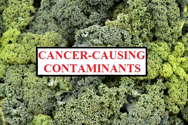 kale is contaminated by cancer causing chemicals