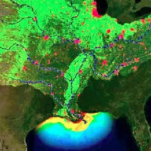 """Near-Record """"Dead Zone"""" to Hit the Gulf of Mexico By End of This Year, Scientists Say"""