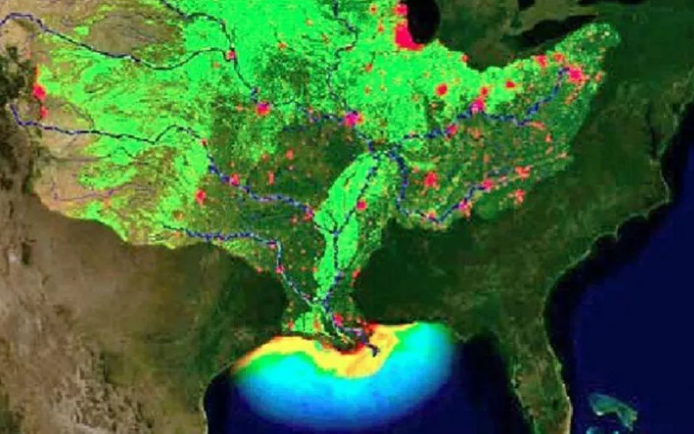 gulf of mexico dead zone 2019