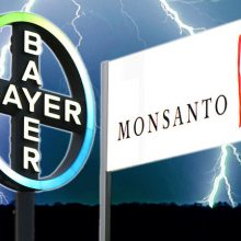 Top 10 Bayer Products to Boycott Since the Company's Merger with Monsanto