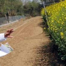 French Farmers Destroy Nearly 50,000 Acres of Illegal Genetically Modified Canola Crops