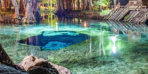 ginnie springs nestle petition
