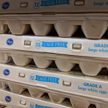 Spending Extra on Cage Free Eggs is a Waste of Money (For These Six Reasons)