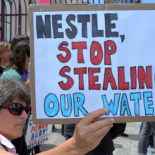 """Victory for the People:"" Nestlé Bottled Water Privatization Claim Denied by Michigan's Second Highest Court"