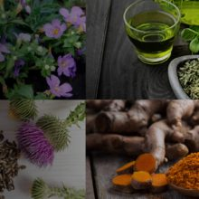 The Combination of These 5 Well-known Herbs May Help Slow Down the Aging Process
