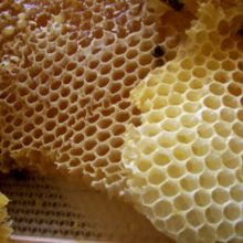 How Naturally Sweet Honey Can Actually Help You Lose Belly Fat