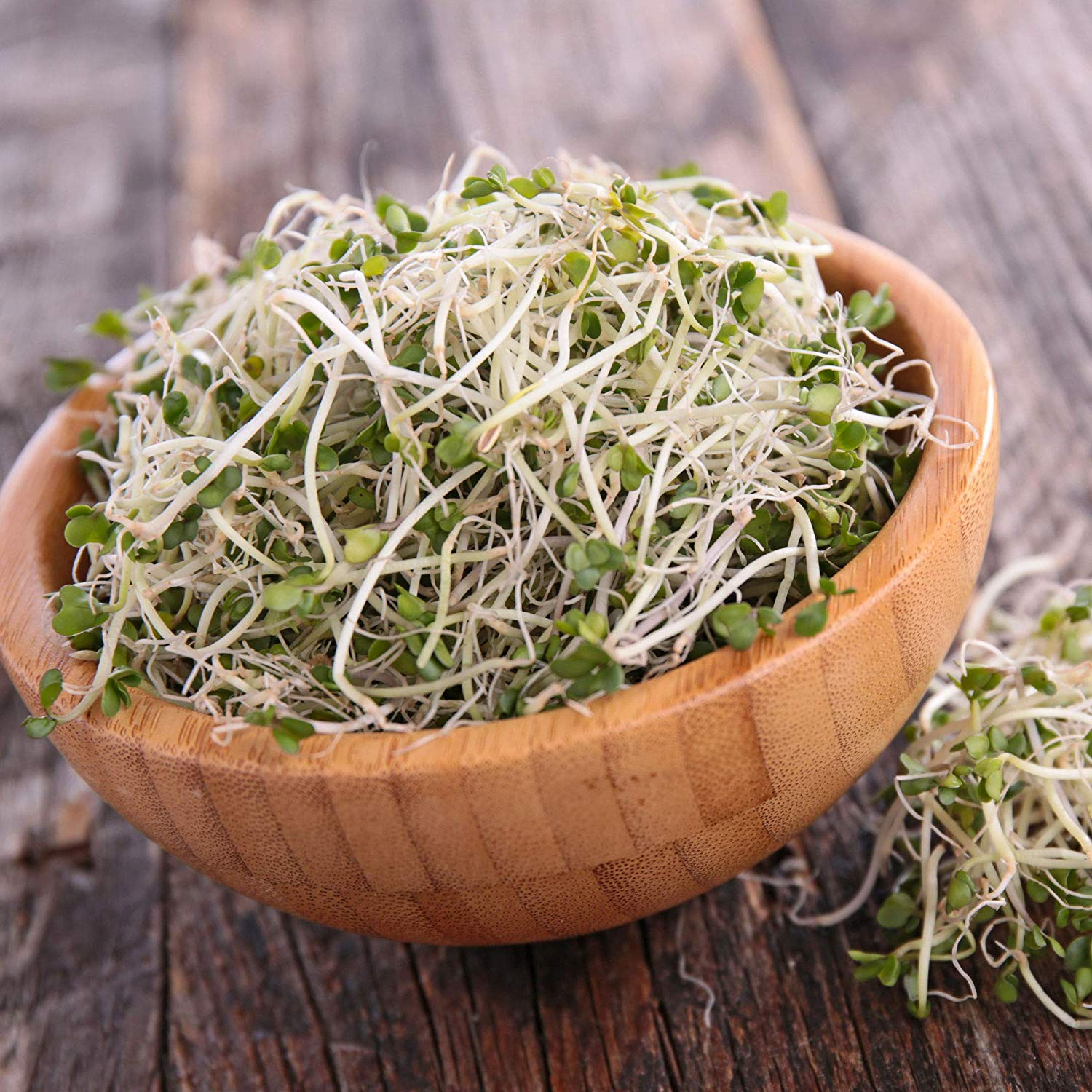 broccoli sprouts idaho