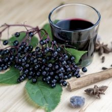 Powerful Elderberry Compound STONEWALLS Viruses by Directly Prohibiting Their Entry and Replication Into Human Cells, Study Finds