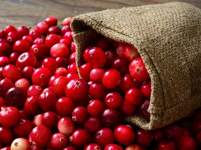 cranberry juice for UTI