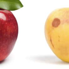 USDA Testing Shows Stark Difference in Pesticide Residues on Conventional Apples vs. Organic Apples