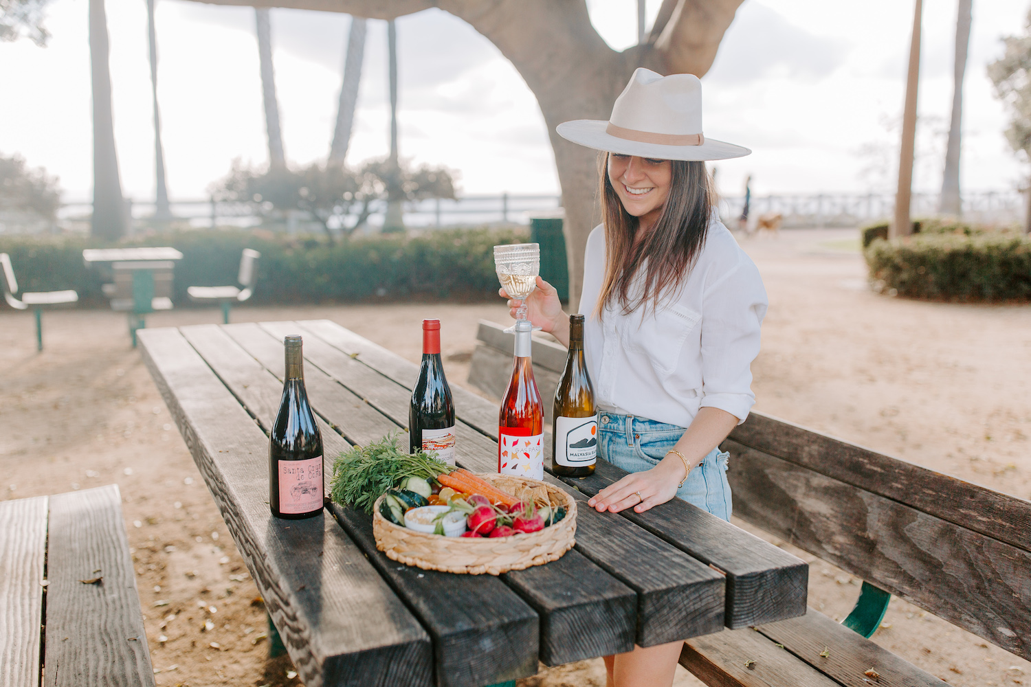 wine party company review