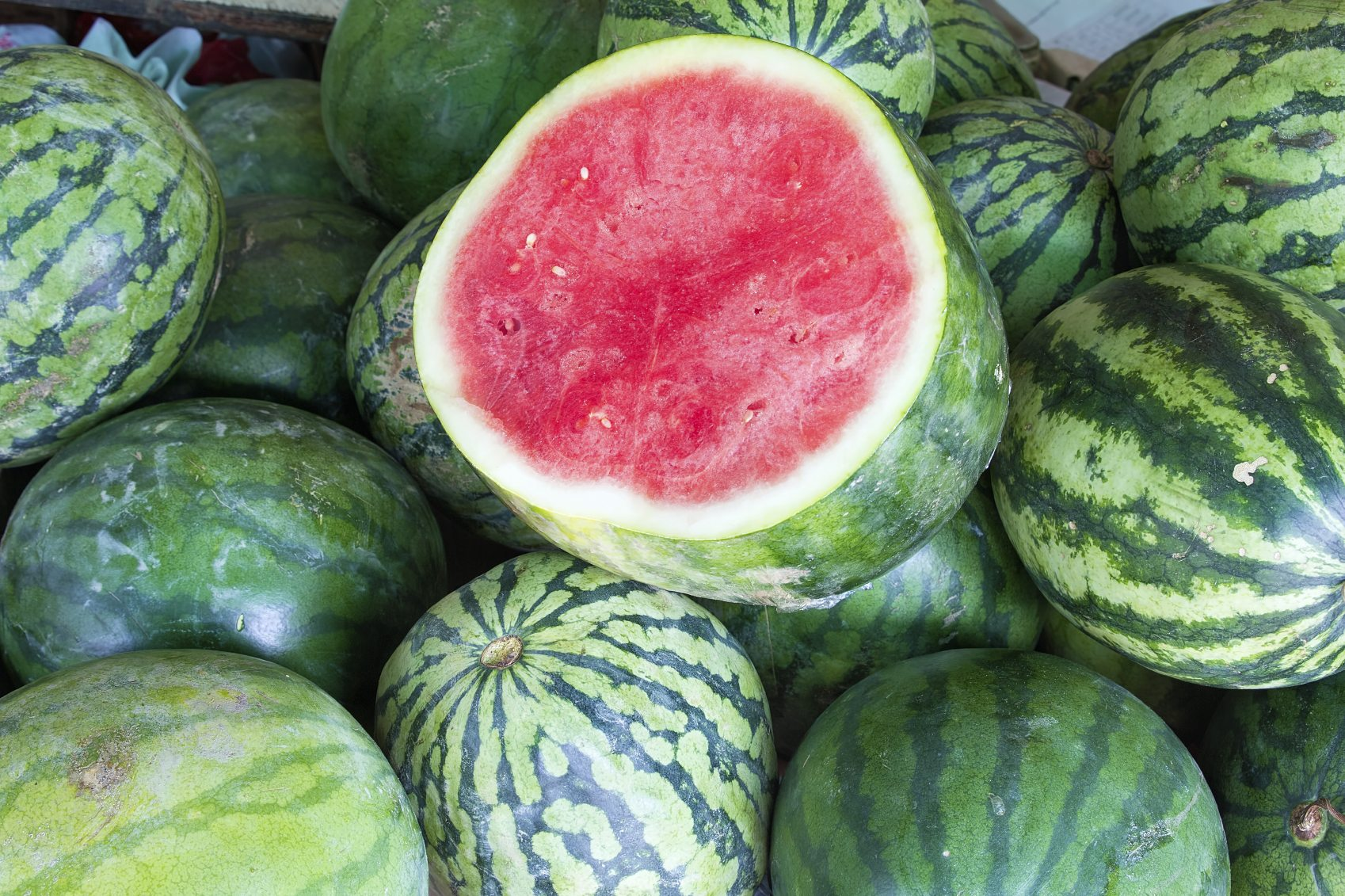 monsanto watermelon is it gmo