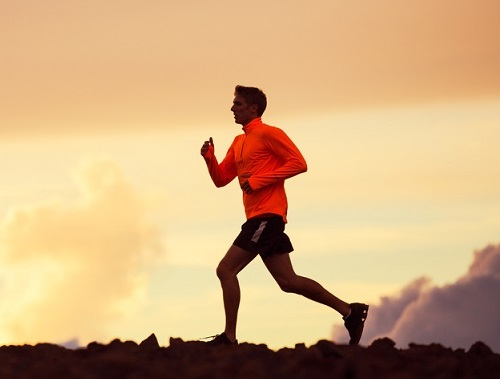 coconut sugar for runners