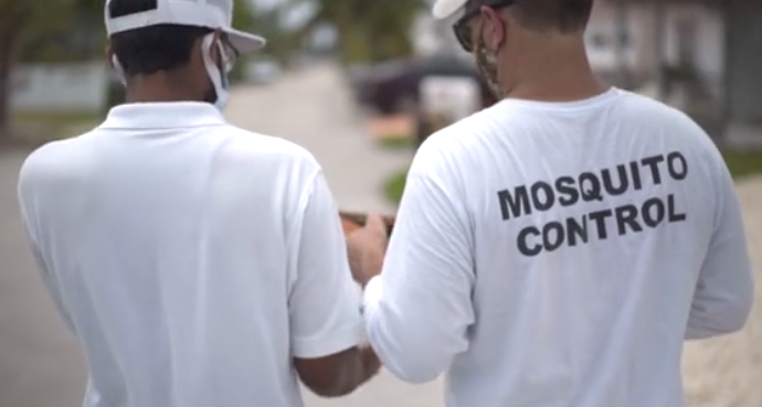 gmo mosquitoes florida residents