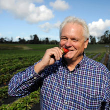 Poisoned By Pesticides, Strawberry Farmer Converts His Fields to Organic, Does Something No One Has Ever Done Before