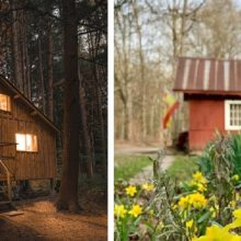 In Pictures: An Unforgettable Visit to Wellneste Lodge and Nature Sanctuary in Upstate New York
